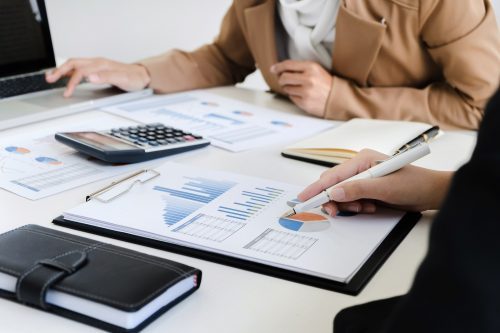 business valuation financier audit working with accountant and data annual report